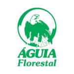 logo_aguia