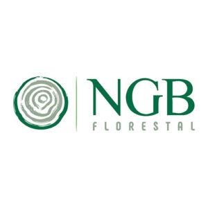 logo_ngb