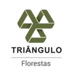 logo_triangulo