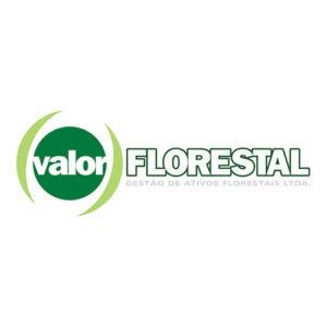 logo_valor